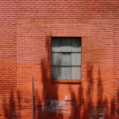 red_brick_wall