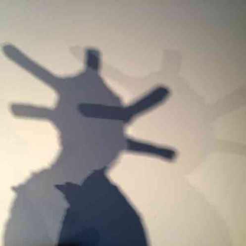shadow_gallery